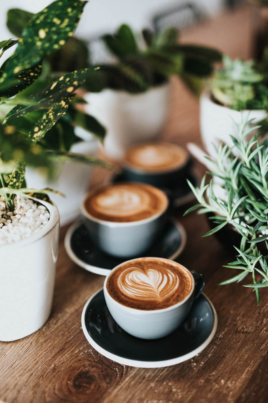 https://www.coffeexpert.gr/wp-content/uploads/2019/05/coffee-expert-sl1.jpg